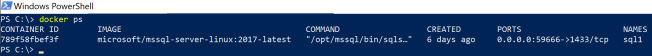 2. container SQL Server is running